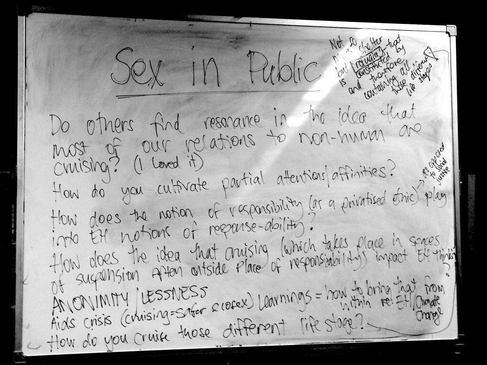 sex in public whiteboard BW.png